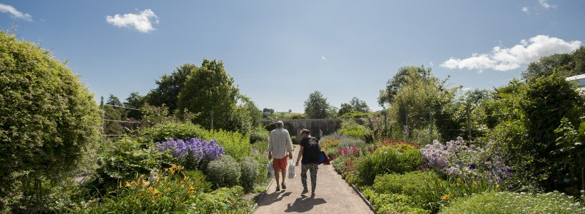 Double Walled Garden colour corridors