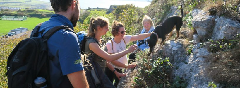 Seed Collecting on the Great Orme