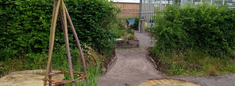 Conserving Welsh Plants: the Revamp