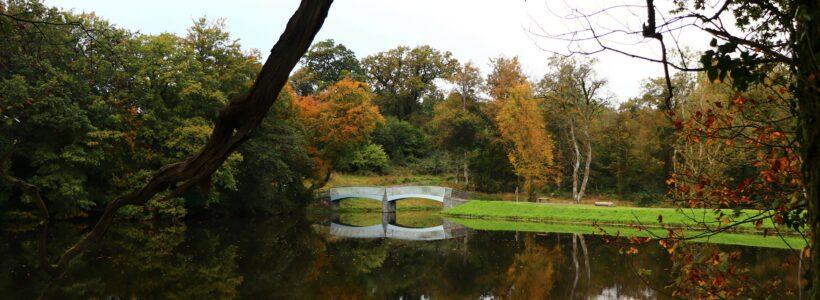 Autumn view over lake